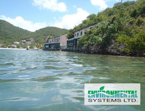 Brandywine Bay, Tortola